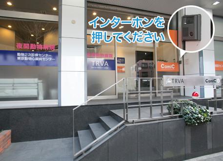 夜間 動物 病院 長野県:夜間・時間外・救急・動物病院